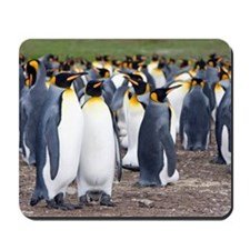 Falkland islands Mousepad