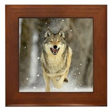 Unique Animals wildlife Framed Tile