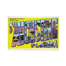 St Augustine Florida Greetings Rectangle Magnet