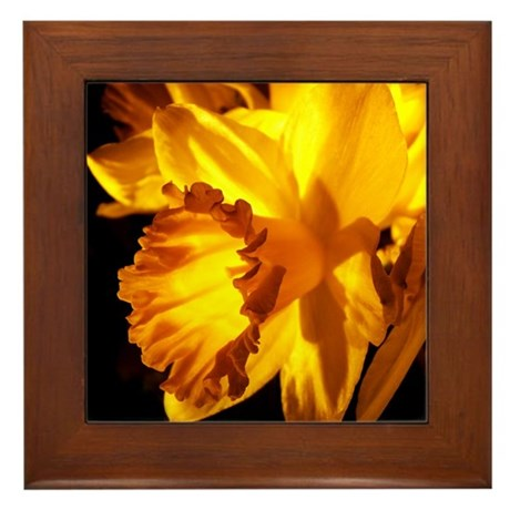 Yellow Daffodil Framed Tile