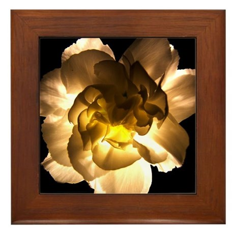 White Carnation Framed Tile