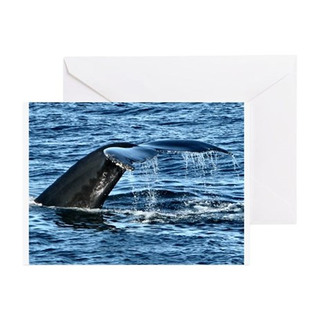 Whale Tail - Greeting Cards (Pk of 20)