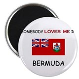 Somebody Loves Me In BERMUDA Magnet