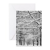 HIGH PARK, TORONTO Greeting Cards (Pk of 10)
