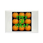 Trick or Treat 9 Great Pumpkins Rectangle Magnet (
