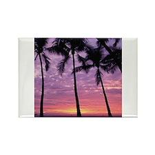 Unique Tropical sunset Rectangle Magnet (10 pack)