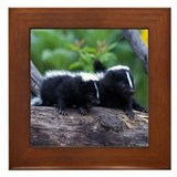 Skunk Framed Tile