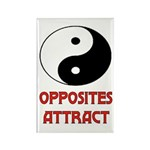 OPPOSITES ATTRACT Rectangle Magnet