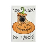 Halloween Shar-Pei Rectangle Magnet
