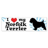 I Love My Norfolk Terrier Bumper Car Sticker