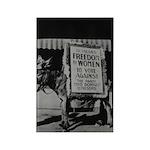 Suffragists Against Democrats 1916 Magnet (10)