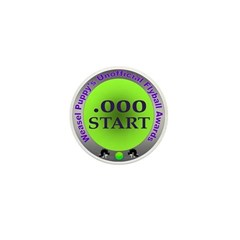 Perfect Start Flyball Award Mini Button