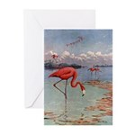 Flamingo Greeting Cards (Pk of 20)