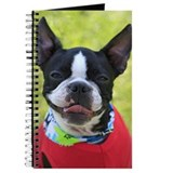BOSTON TERRIER Journal