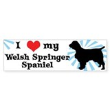 I Love My Welsh Springer Spaniel Bumper Car Sticker