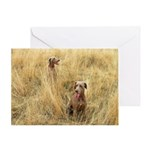 The Great Dane Greeting Card