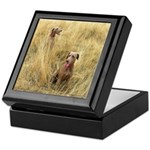 The Great Dane Keepsake Box