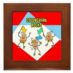 Colorguard Rocks Framed Tile