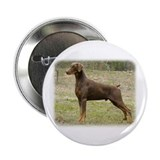 Doberman Buttons