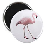 Flamingo Wearing Shoes Magnet