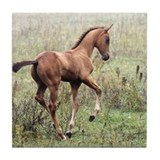 Playful Horse Foal Tile Coaster