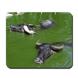 Water Buffalo Mousepad