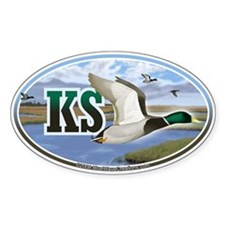 KS Kansas Mallard Ducks oval car bumper sticker