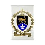 DEVAUX Family Crest Rectangle Magnet (10 pack)