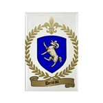 DENEAU Family Crest Rectangle Magnet