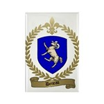 DENEAU Family Crest Rectangle Magnet (100 pack)