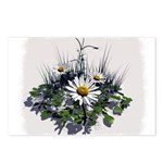 DAISY ART Postcards (Package of 8)