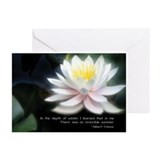 Dreamlotus Greeting Cards (Pk of 10)