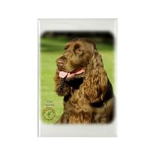 Field Spaniel 9P018D-158 Rectangle Magnet (100 pac