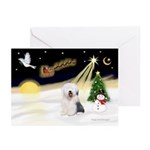 Night Flight/OES #2 Greeting Cards (Pk of 20)