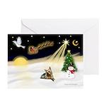 Night Flight/ Silky Ter 14 Greeting Cards (Pk of 1