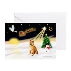 Night Flight/Shiba Inu #7 Greeting Cards (Pk/20)