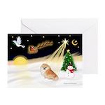 Night Flight/Pomeranian #2 Greeting Cards (Pk/20)