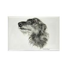 Scottish Deerhound Rectangle Magnet