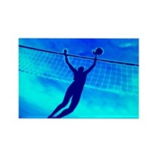 VOLLEYBALL BLUE Rectangle Magnet (10 pack)