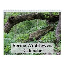 Spring Wildflowers Wall Calendar