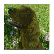Rock the Irish Setter Tile Coaster