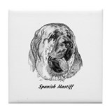 Cute Spanish mastiff Tile Coaster