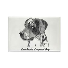 Cute Catahoula Rectangle Magnet