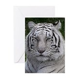 White Tiger Greeting Card