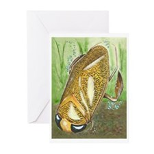 Water Boatman Greeting Cards (Pk of 20)