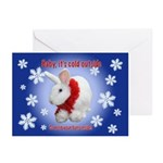 Bunny &Quot;Cold Outside&Quot; Cards (Pk Of 10)