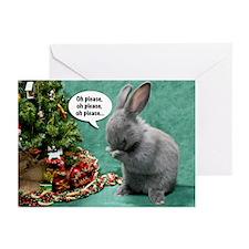 Baby Bunny Pray Christmas Cards (Pk Of 10)