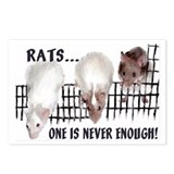 Lotsa Rats! Postcards (Package of 8)