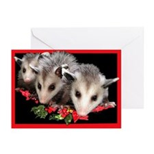 Christmas Opossum Greeting Cards (Pk of 10)