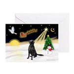 Night Flight/Flat Coat Rtr Greeting Cards (Pk of 2